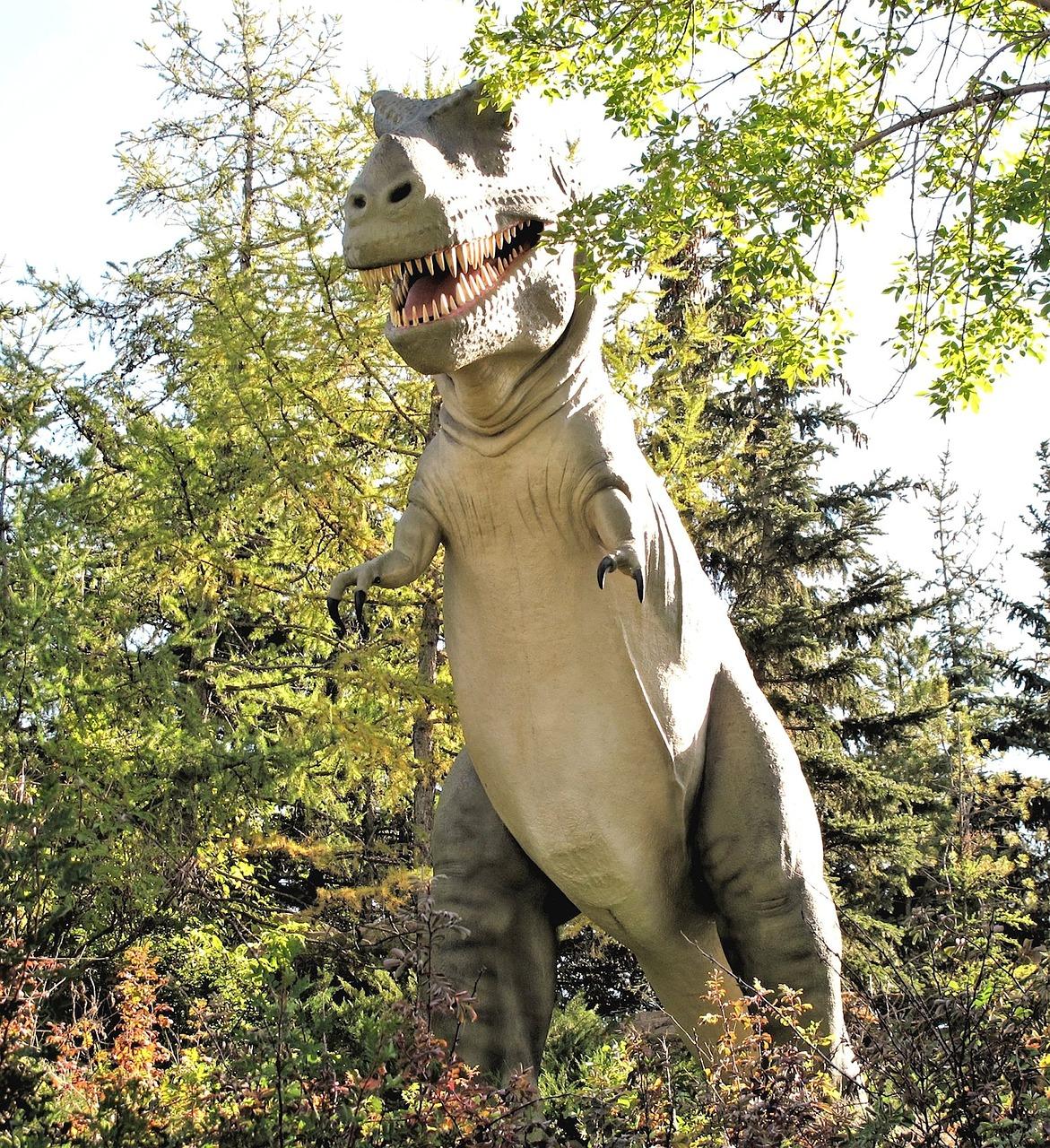 fokarium park dinozaurów w łebie
